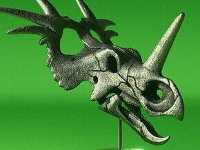 Styracosaurus skull - dinosaur model in White Natural Versatile Plastic: 1:16