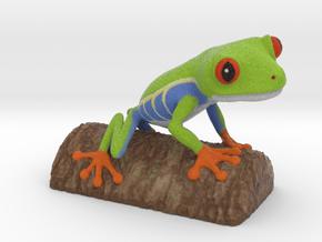 Red-eyed Tree Frog in Natural Full Color Sandstone