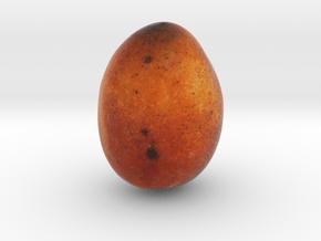 The Mango in Full Color Sandstone
