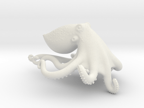 Blue Ringed Octopus in White Natural Versatile Plastic