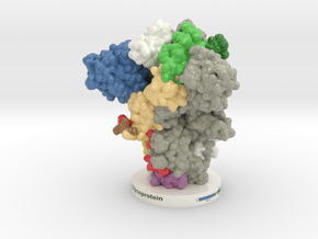 Spike Glycoprotein Prefusion 6XR8 in Glossy Full Color Sandstone: Extra Small