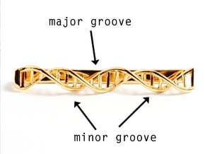 DNA Tie Bar - Science Jewelry in 14k Gold Plated Brass