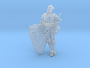 Swedish Knight in Smooth Fine Detail Plastic