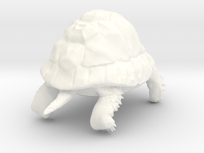 Tortoise in White Processed Versatile Plastic: Small