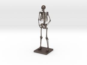 """6"""" Desktop Skeleton in Polished Bronzed Silver Steel"""
