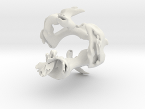 frac26 in White Natural Versatile Plastic