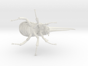 Herculesbeetle10scaled Fixed Hollow .6mmhole in White Natural Versatile Plastic