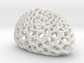 Radiolarian skeleton in White Natural Versatile Plastic