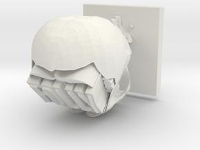 Folly Skull in White Natural Versatile Plastic