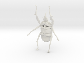 Giant Beetle - Goliath 7cm - Scarab in White Natural Versatile Plastic