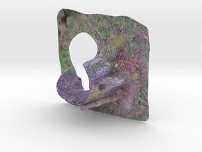 Arbreoctobre0.4x2x5.wrl in Full Color Sandstone