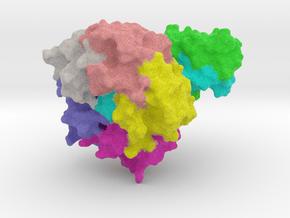 E-coli Toxin in Full Color Sandstone