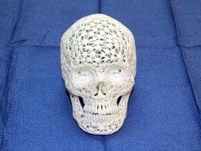 Lace Skull, Half Size in White Natural Versatile Plastic