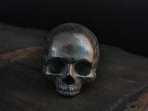 Yorick Skull with Latin Inscription in Polished Nickel Steel