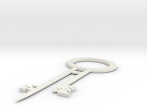 Pirate Treasure Chest Key in White Natural Versatile Plastic