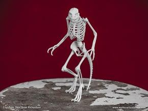 Lizard Man Skeleton in White Natural Versatile Plastic