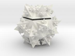 Ico Koch Container in White Natural Versatile Plastic