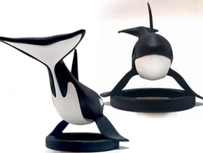 Orca Bottom Half in White Natural Versatile Plastic