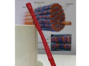 Muscle Fiber in Pink Processed Versatile Plastic