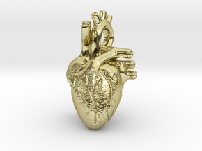 Anatomical Heart Pendant in 18K Gold Plated