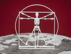 Vitruvian Man Skeleton in White Natural Versatile Plastic