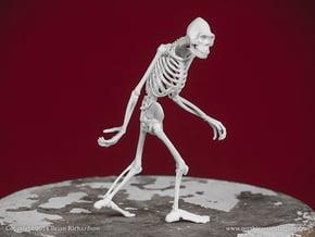Sasquatch Skeleton in White Natural Versatile Plastic