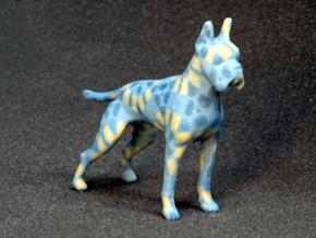 Blue Mosaic Boxer in Full Color Sandstone