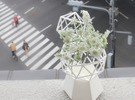 Flower Vase_geometrical solidv in White Strong & Flexible