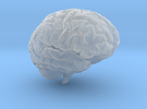 Brain 3D in Frosted Ultra Detail