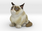 Grumpy Cat V1 in Full Color Sandstone