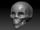 large skull hollow in White Strong & Flexible Polished