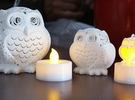 Stelliform Owl Small Size in White Strong & Flexible Polished