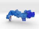 Glucagon Like Factor-1 1D0R