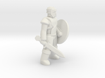 General Fighter Mini 2 (Sword and Shield)