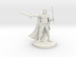 Half Elf Two Weapon Fighter