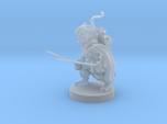 Gnome Ranger / Rogue