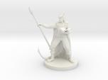 Tiefling Staff Wizard