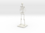 "10"" Desktop Skeleton"