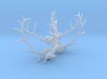 1/48 Elk and Deer antlers