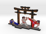 International Karate (IK+) - S