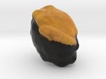 The Sushi of Sea Urchin-mini