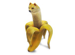 Banana Doge for Scale
