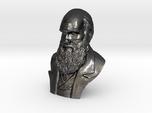 "Charles Darwin 16"" Bust"