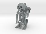 Mr Bones -- Articulated Skeleton