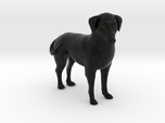 Custom Dog Figurine - Rocky