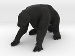 Megatherium 1 72(MEST 2015)