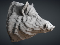 Wild Boar Head. 13cm in White Strong & Flexible
