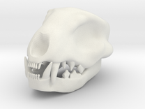 Cat Skull 2 Inch in White Strong & Flexible