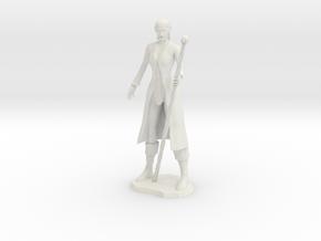 Female Elf Wizard in White Natural Versatile Plastic