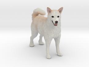 Custom Dog Figurine - Zuma in Full Color Sandstone